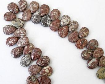 Wild Horse Magnesite Appaloosa Jasper Briolette Teardrop For Beaded Jewelry Making Metaphysical Healing Stone
