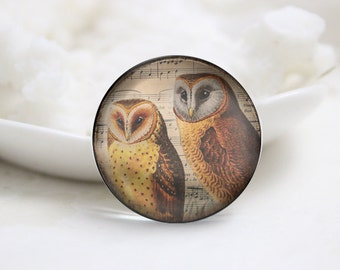 10mm 12mm 14mm 16mm 18mm 20mm 25mm 30mm Handmade Round Photo glass Cabochons Owl Image Glass Cover  (P2662)