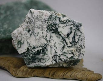 Tree Agate Specimen - Item R00691