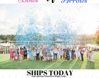 Gender Reveal | Bows or Arrows Gender Reveal Confetti Cannon | Gender Reveal Ideas| Bows or Arrows| Smoke Bomb alt| Confetti Cannon