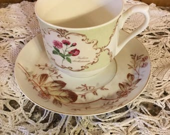 Vintage Tea Cup and Saucer. . .