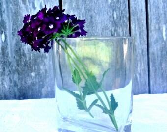 Vintage OVAL Glass vase mid century flower vase