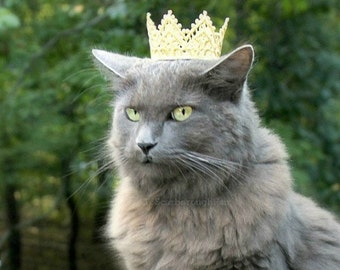 Cat Crown Game of Thrones Inspired - Dog Crown The White Queen - Princess Crown for Cat - Cat Puppy Crown - Cat King Crown -