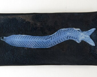 Tarpon Leptocephalus Fish Larva Fused Glass Dish