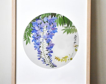 Framed Chinese Purple Wisteria Watercolor Print