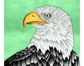DIGITAL Eagle illustration-Bald Eagle-instant download from original pencil, watercolor and acryllic illustration