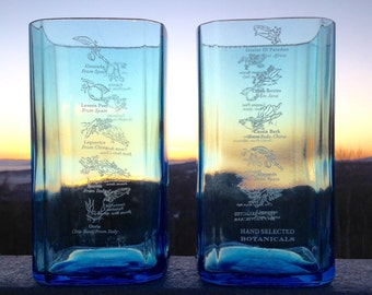 Recycled Bombay Glasses
