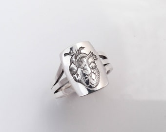 Signet Ring Heart Anatomy - Silver