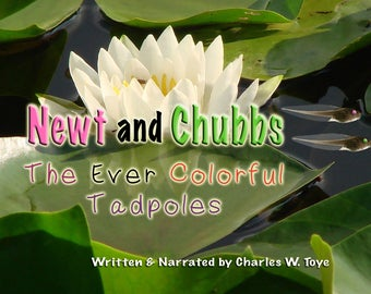 NEWT and CHUBBS  The Ever Colorful Tadpoles