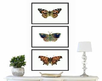Butterfly Print Set- Bohemian Butterfly Print - Vintage Butterfly Prints - Wall Art Butterfly Decor - Antique Butterfly Print Set - Wall Art
