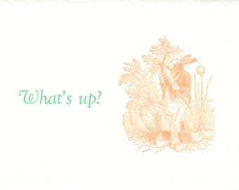 4 What's Up Note Cards, Letterpress
