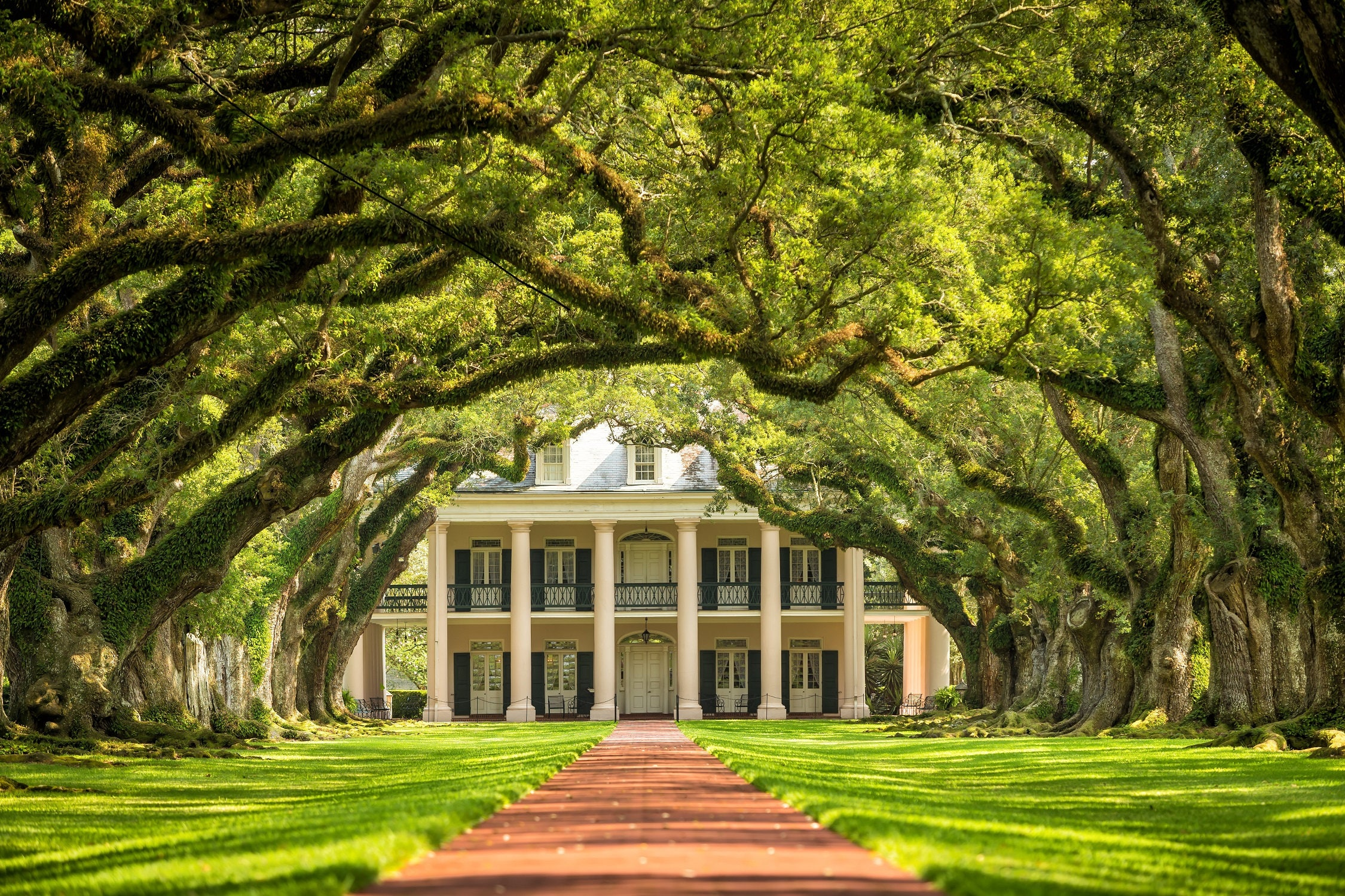Oak Alley plantation canvas, New Orleans Canvas, Plantation canvas ...