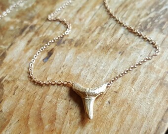 14K Gold Shark Tooth Necklace 14K Gold Necklace 14K Gold Shark Tooth Pendant Gold Shark Tooth Charm Womens Gift 14K Gold Chain Necklaces
