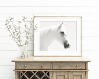 White Horse Print, White on White Equine Photography, Physical Print