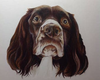 Made-to-Order, Custom Dog Portraits