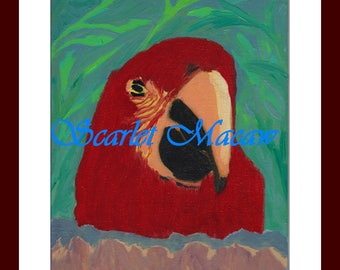 """8""""x10"""" oil painting on board canvas Macaw"""