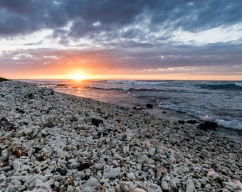 Sunset on a Coral Beach
