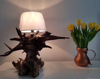Wonderful Driftwood Lamp