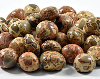 Leopardite Tumbled Gemstone - Stone of Our Primal Energy and Ancestral Bonds