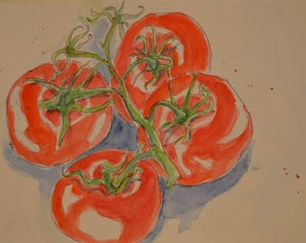 Original watercolour painting of ripe tomatoes on the vine