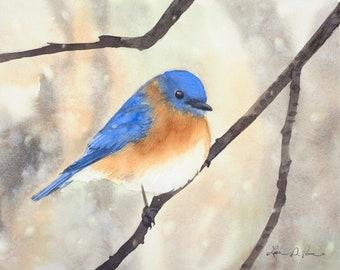 Bluebird Original Watercolor Painting, 8 x 10 inches, Winter Bird Art, Eastern Bluebird in Snow, nature art, wildlife painting