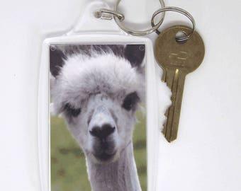 Keyring - Alpaca photo print inside acrylic