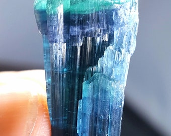 28 Carats Top Quality Excellent Blue Bi-Color Tourmaline Terminated Crystal from Afghanistan