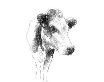 Dairy cow | Limited edition fine art print from original drawing. Free shipping.