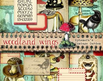 "Woodland Wings - 5x7"" Printable Journal Kit"