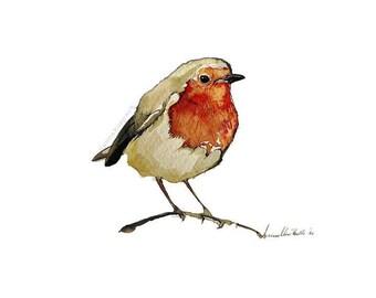Robin,limited edition A4 gicleé print