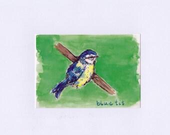 A6 Blue Tit postcard