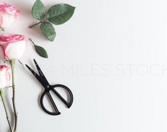 Stock Photo Roses / Styled Stock Photography / Product Photo / Flower Stock Photo / Valentines Day / Social Media Photo / Spring Stock Photo
