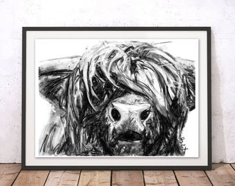 Highland Cow Art Print Highland Cow Wall Art Charcoal Illustration Highland Cow Monocrhome Home Decor Highland Cow Animal Print by Bex