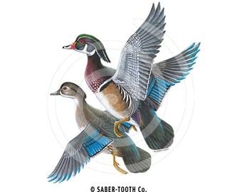 Wood Duck Birds Decal Sticker