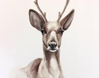 Caribou Watercolor PRINT
