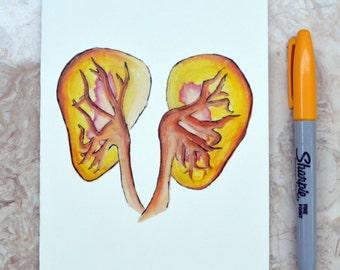 Kidney Card