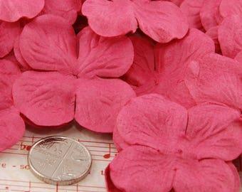 Pink Hydrangea Pbc169