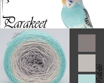 Parakeet* Merino silk Gradient Yarn hand dyed - Lace weight