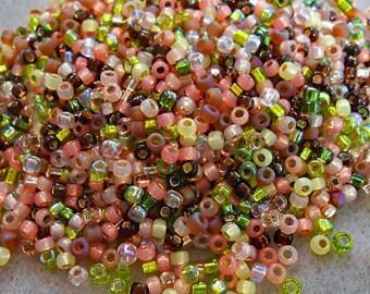8/0 Miyuki and Toho Seed Bead Mix, 25 grams, Pink/Green/Brown/Salmon (0090)