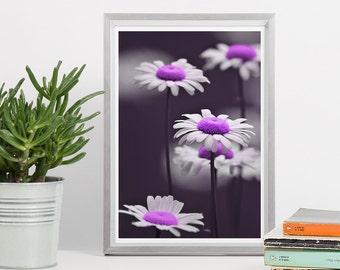 Printable Wall Art - Purple Daisies