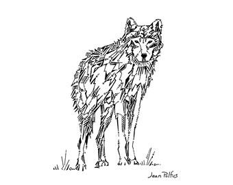 Wolf drawing, gray wolf illustration, timber wolf, black and white, wildlife drawing, wild animal, woodland animal art, fine art print