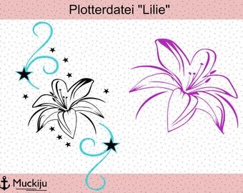 """Lily"" plotter"