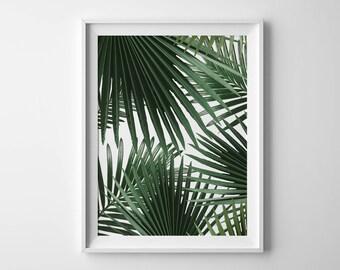 Palm leaf print Palm print Botanical print Palm tree Leaf print Botanical art Tropical art Summer outdoors Exotic print Tropical poster