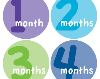 12 Monthly Baby Milestone Waterproof Glossy Stickers - Just Born - Newborn - Weekly stickers available - Design M014-09