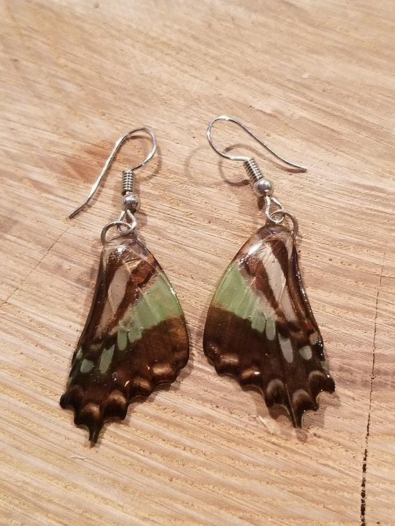 Real Butterfly Wing Earrings Preserved In Resin Nature Women Jewelry Boho Chic Natural Earth Fashion Art (E221)