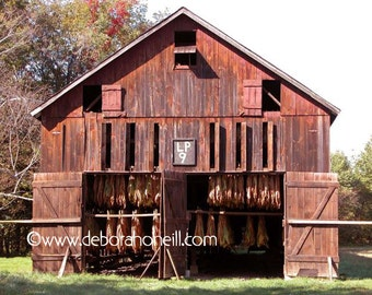 "Barn Photography ""Red Tobacco Barn"""
