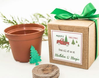 """12 Seed Paper Christmas Tree Gift Boxed Holiday Party Favor, Unique Garden Gift Idea, Personalized """"Merry Christmas"""" Message, Plant a Tree"""