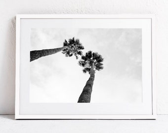 Black and White Photo, Palm Tree Print, Palm Tree Wall Art, Photography PRINTABLE WALL ART Print Dorm Decor, Downloadable Art, Tropical Art