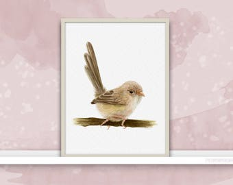 Fairy-Wren {Birds of my heart} Watercolor Illustration & Painting
