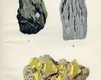 Vintage 1911 Minerals Print Antique Gems Precious Stones print gemstones print, bookplate art print, minerals wall crystal print wall art 1